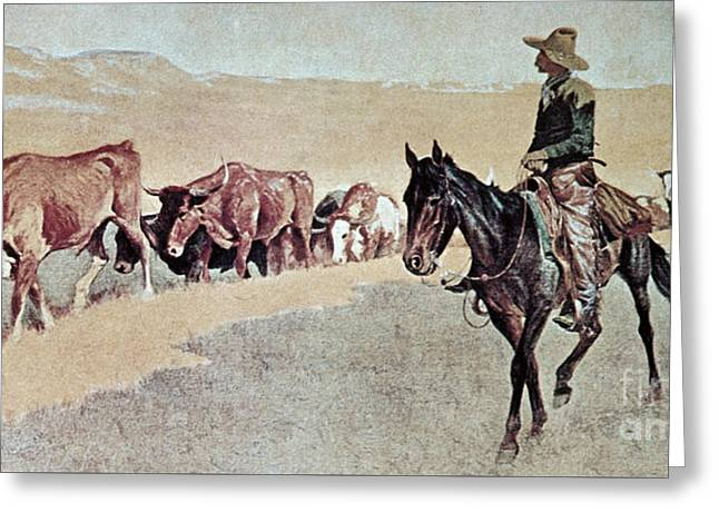 Trailing Texas Longhorns Greeting Card by Frederic Remington