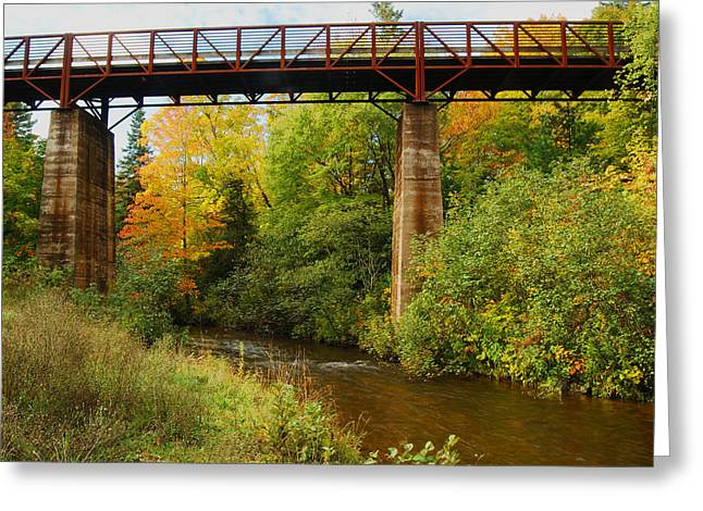 Yellow Dog Greeting Cards - Train Trestle Greeting Card by Michael Peychich