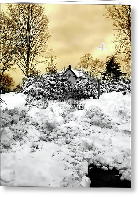 Tramonto Invernale Greeting Card by Diana Angstadt