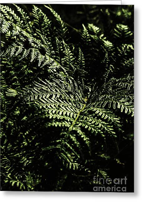 Tranquil Botanical Ferns Greeting Card