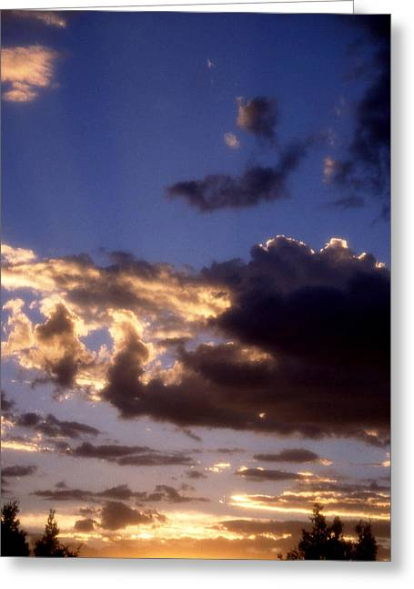 Tranquil Evening Greeting Card by Jan Amiss Photography
