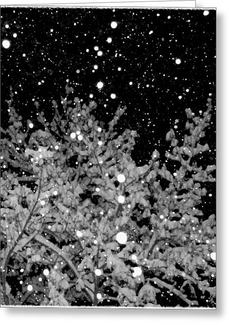 Tranquil Snowfall Greeting Card by Will Borden