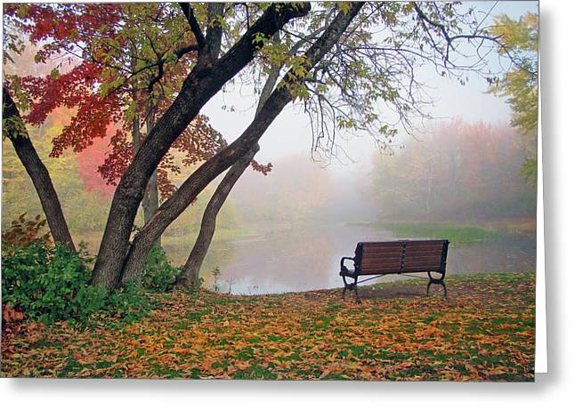 Tranquil View Greeting Card by Betsy Zimmerli