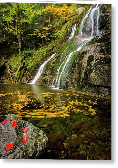 Greeting Card featuring the photograph Tranquil Waters by Mike Lang