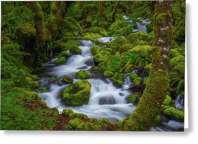 Tranquility Creek Greeting Card by Darren White