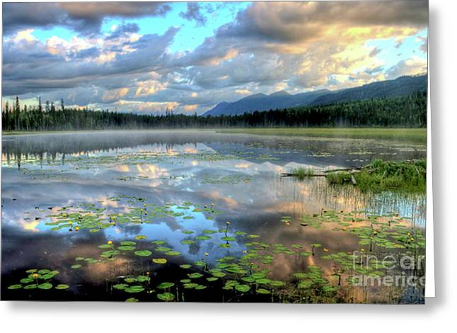 Tranquility Greeting Card by Dave Hampton Photography
