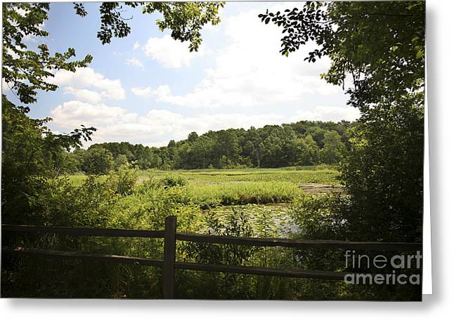 Tranquility Greeting Card by Jeannie Burleson