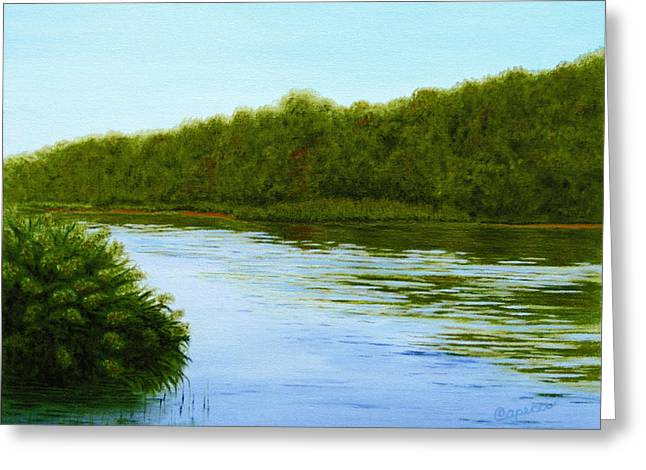 Tranquility On Taylor's Creek Greeting Card by Robin Capecci
