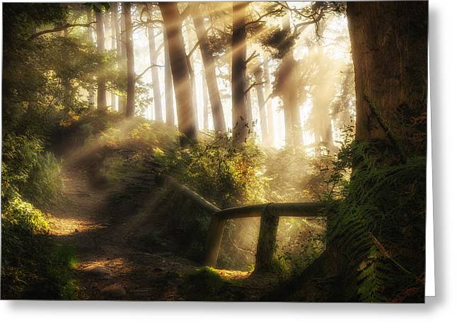 Tranquility Greeting Card by Peter Acs