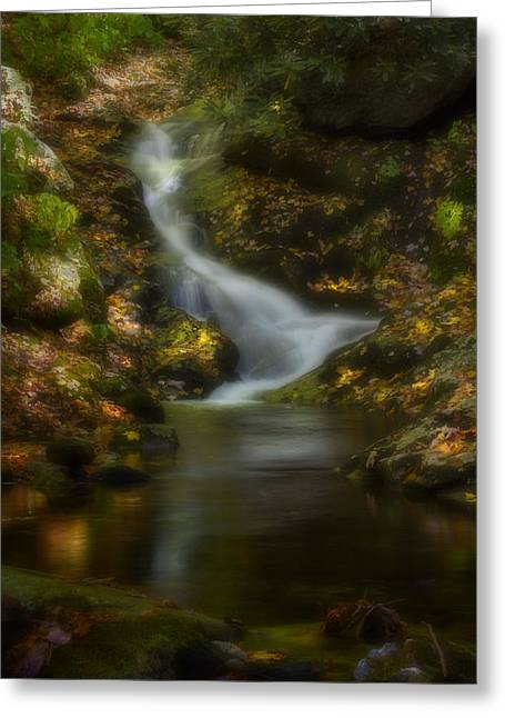 Greeting Card featuring the photograph Tranquility by Ellen Heaverlo