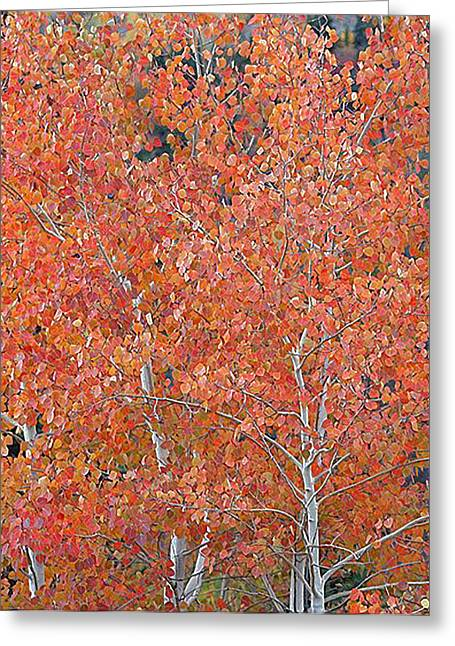 Translucent Aspen Orange Greeting Card