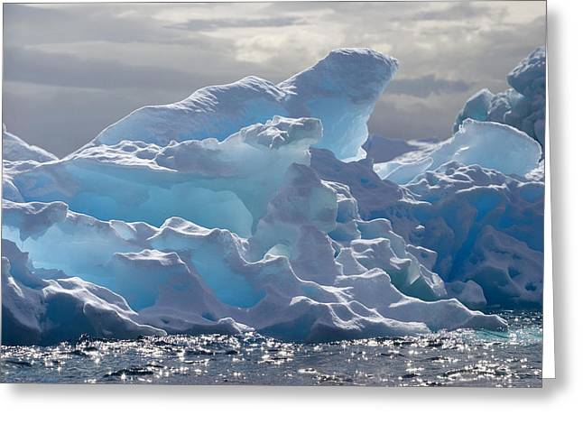 Refection Greeting Cards - Translucent Iceberg Greeting Card by Ira Meyer
