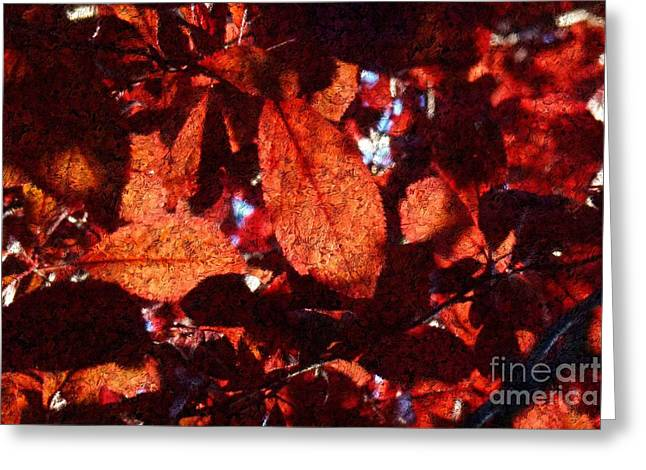 Transparence 14 Greeting Card by Jean Bernard Roussilhe