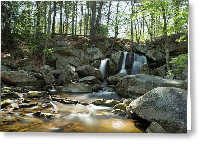 Greeting Card featuring the photograph Trap Falls Spring 1 by Brian Hale