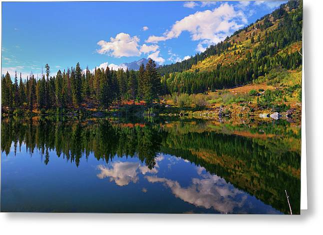 Trapper Lake Reflections Greeting Card by Greg Norrell