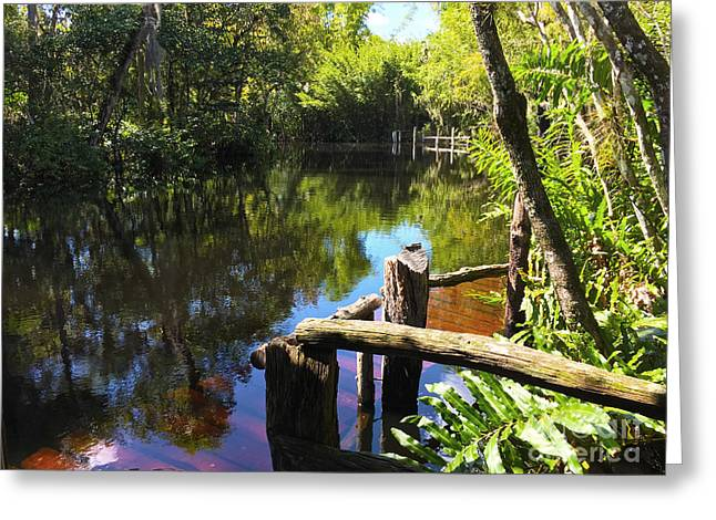 Trapper Nelson Dock Greeting Card