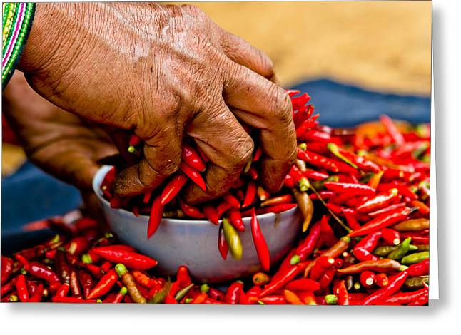 Woman Holding Red Chillies, Can Cau Market, Sapa,vietnam Greeting Card