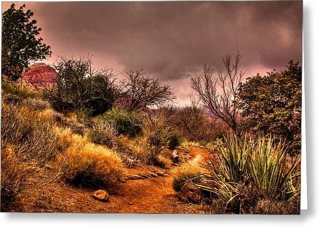 Traveling The Trail At Red Rocks Canyon Greeting Card by David Patterson