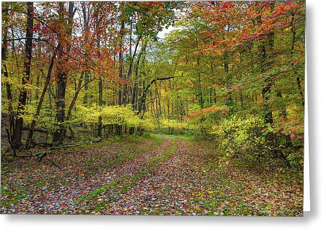 Travels Through Autumn Greeting Card