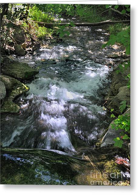 Travertine Creek Greeting Card
