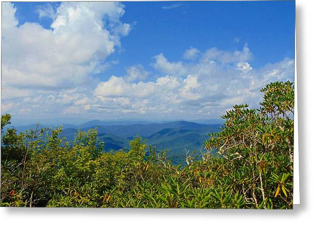 Tray Mountain Summit - South Greeting Card