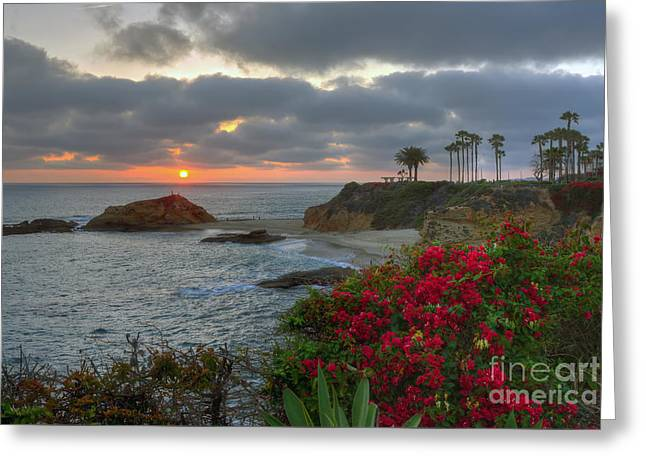 Greeting Card featuring the photograph Treasure Island Beach Shoreline by Eddie Yerkish
