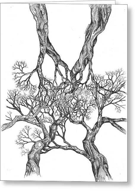 Tree 12 Greeting Card