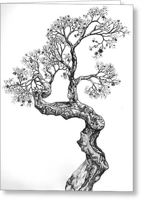 Tree 14 Greeting Card