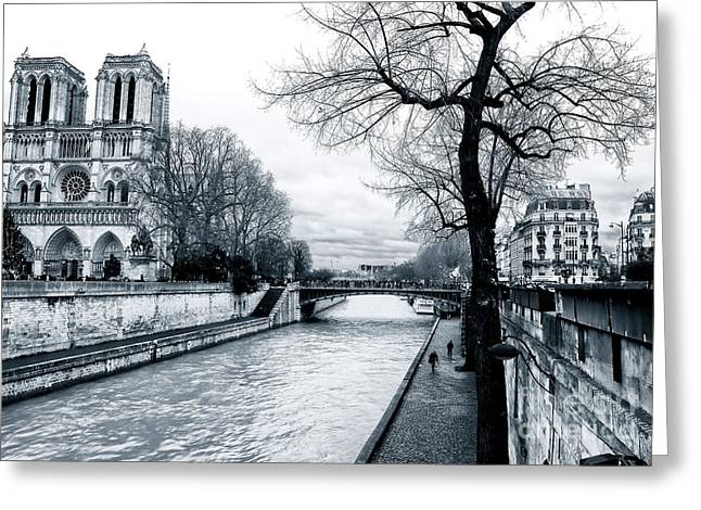 Tree Along The Seine Greeting Card by John Rizzuto