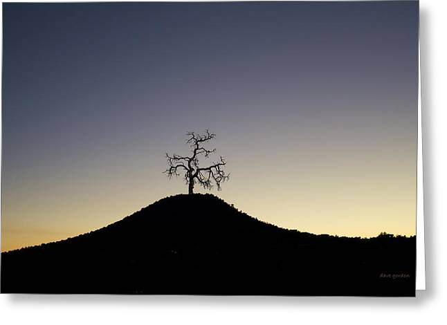 Tree And Hill Color Montage Greeting Card by David Gordon