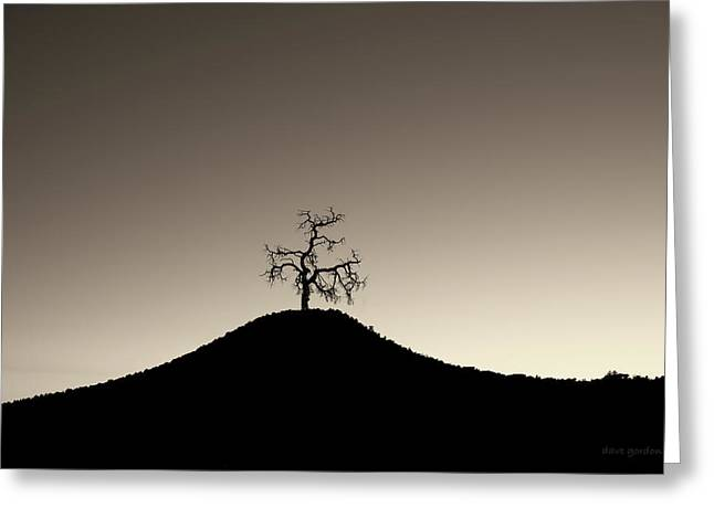 Tree And Hill  Montage Toned Greeting Card