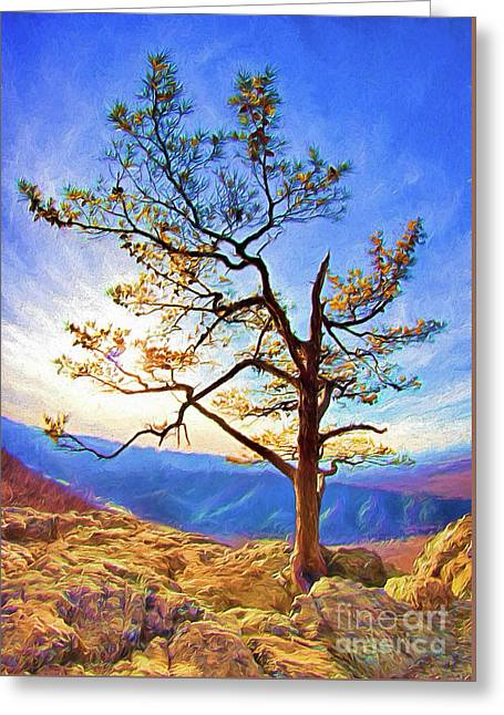 Greeting Card featuring the painting Tree And Rocks In The Blue Ridge Near Sunset Ap by Dan Carmichael
