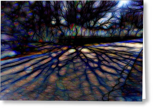 Tree And Shadow Greeting Card by Lilia D