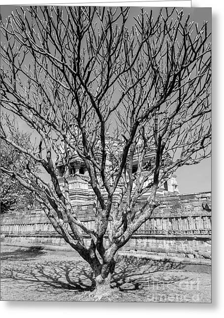 Tree And Temple Greeting Card