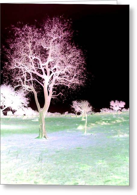 Tree Art  Greeting Card
