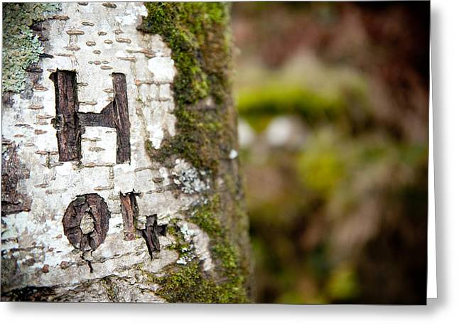 Tree Bark Graffiti - H 04 Greeting Card