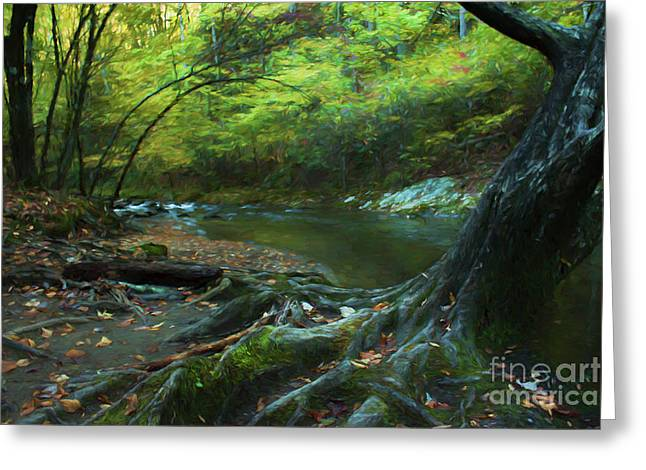 Tree By Water Greeting Card by Lena Auxier
