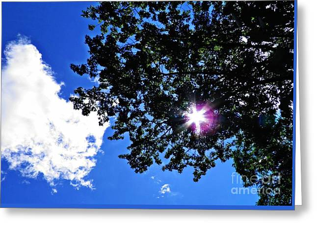 Tree Cloud And Sun Greeting Card by Sarah Loft