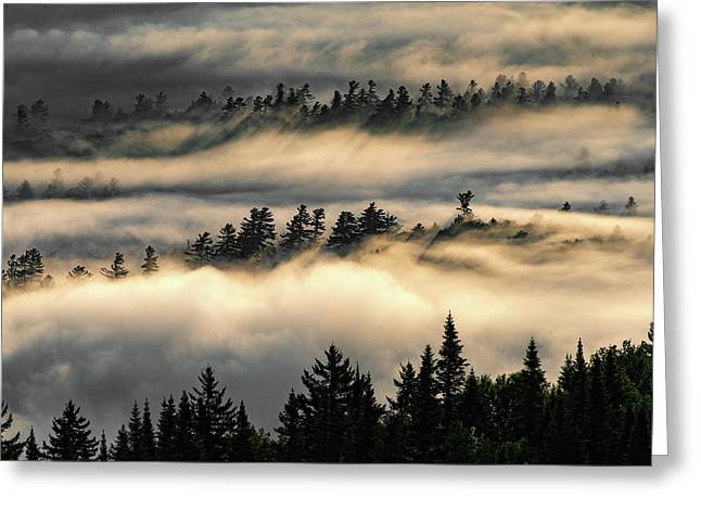 Trees In The Clouds Greeting Card