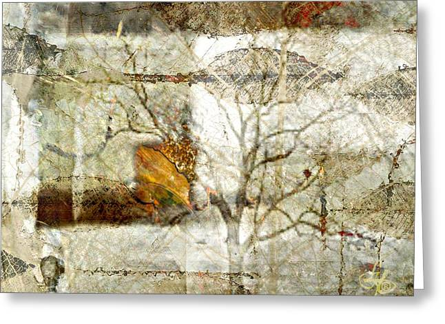 Tree Deconstructed 1 Greeting Card by Lynda Payton