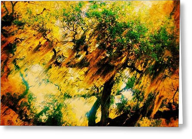 #tree #green #yellow #colourful #sc Greeting Card by Katie Williams