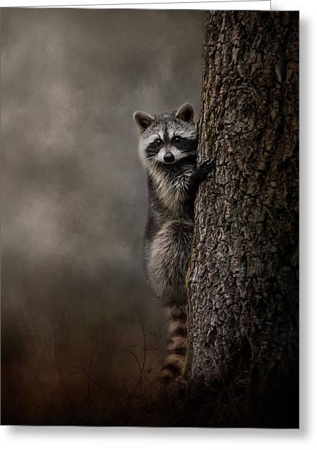 Tree Hugger Raccoon Art Greeting Card