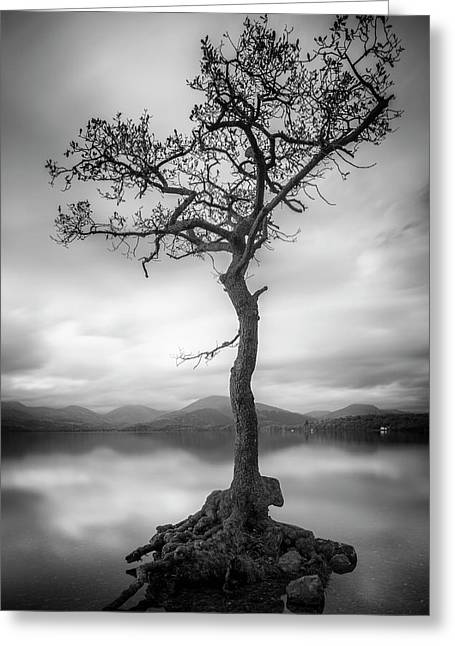 Tree In The Loch Greeting Card