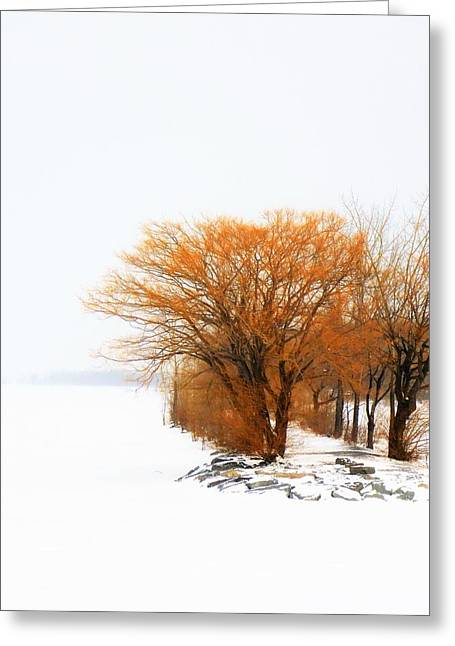 Tree In The Winter Greeting Card