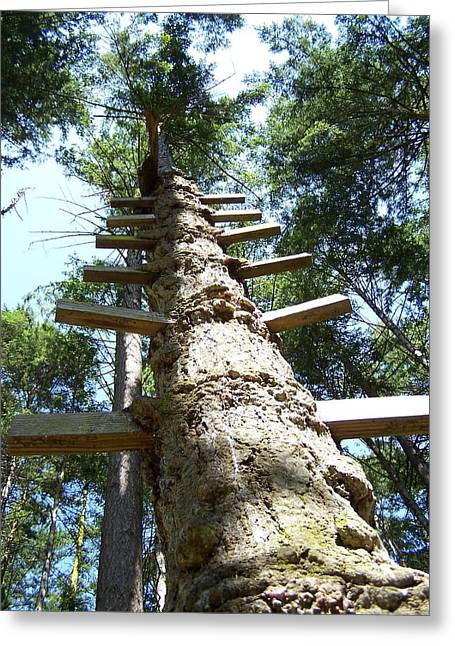 Tree Ladder Greeting Card by Gene Ritchhart
