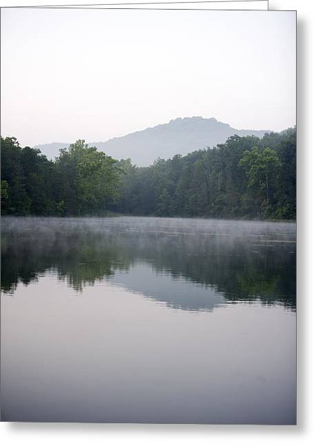 Tree Landscape Reflecting In Water Greeting Card by Gillham Studios