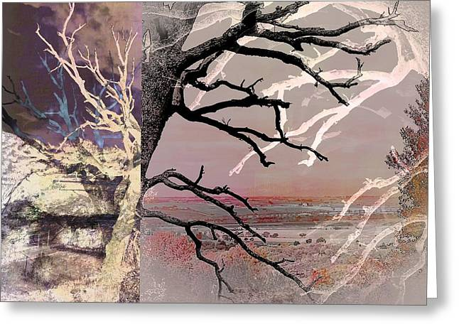 Tree Layers 8 Greeting Card by Dorothy Berry-Lound
