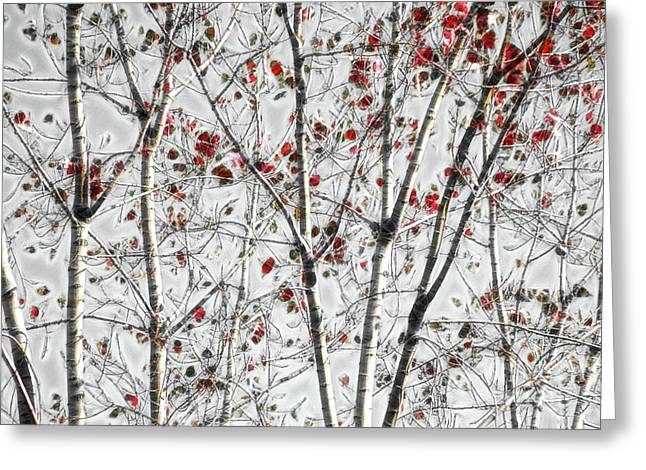 Tree Lines - A44 Greeting Card
