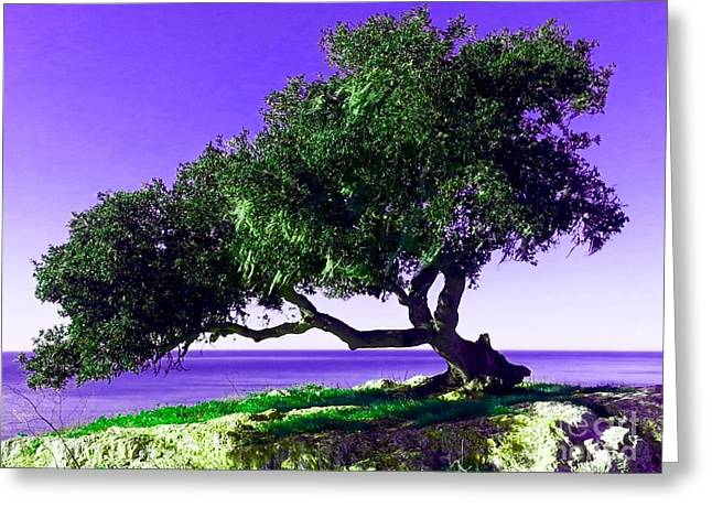 Tree Of Life - 2 Greeting Card by Tap On Photo