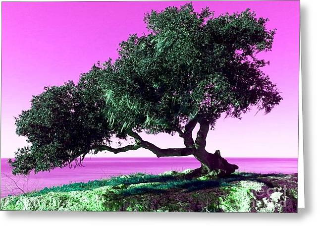 Tree Of Life - 1 Greeting Card by Tap On Photo